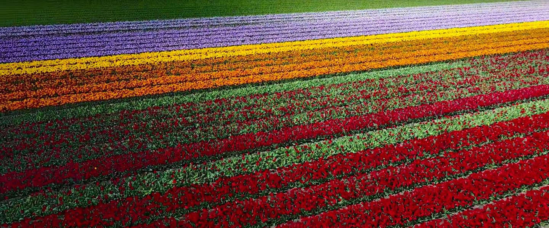 Mooi: Nederland in dronebeelden is prachtig om te zien