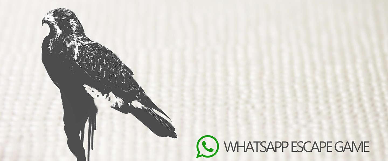 The Black Hawk: Een escape game via Whatsapp