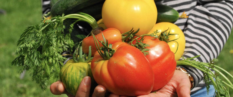 GoodFoodClub maakt alle duurzame lokale boeren vindbaar
