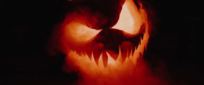 Halloween weetjes: 4 bizarre vondsten in opslagboxen