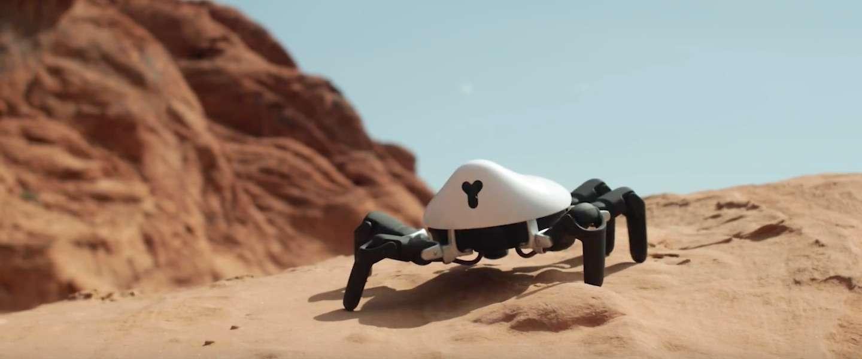 Dit is HEXA: een spin-robot die je zelf kunt programmeren