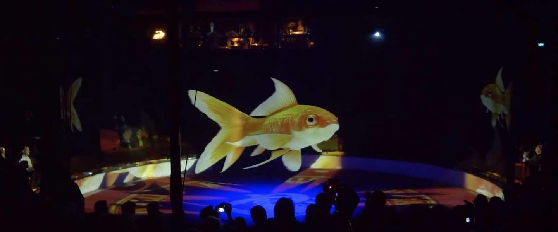 Duits circus gebruikt hologrammen in plaats van levende dieren