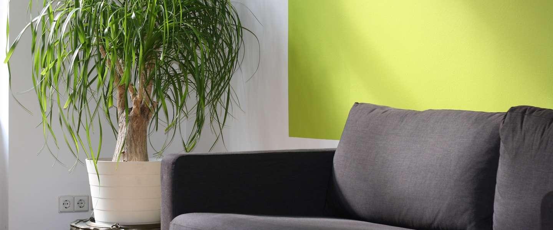 IKEA opent winkel in het hart van Parijs