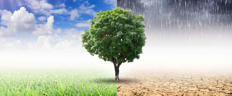 Klimaat is een politiek speeltje aan het worden
