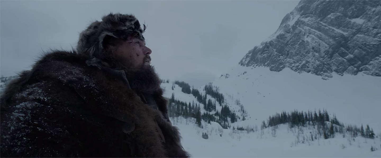 Leonardo DiCaprio wint eindelijk een Oscar > internet goes crazy