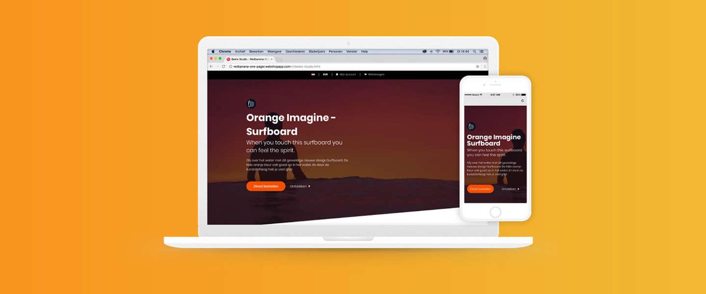 Dit kun je bereiken met een one product webshop