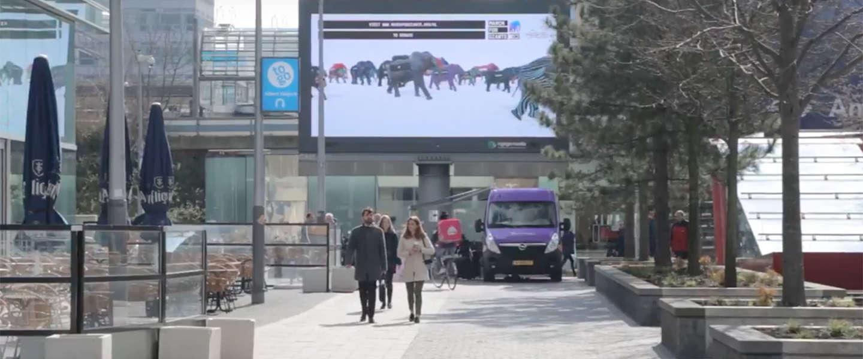 #MarchforGiants: duizenden virtuele olifanten via Amsterdam naar Botswana