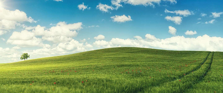Microsoft teast het opstartgeluid van Windows 11