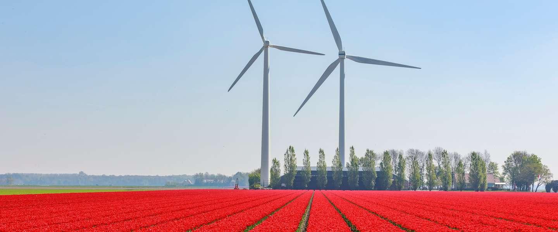 Op de site van Netherlands and you  vind je alle informatie voor een bezoek aan ons land