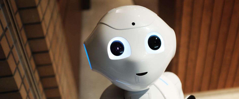 Heb jij de nationale AI-cursus al gedaan?