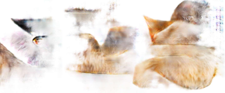 Maak je eigen katten-nachtmerries met deze image-generator