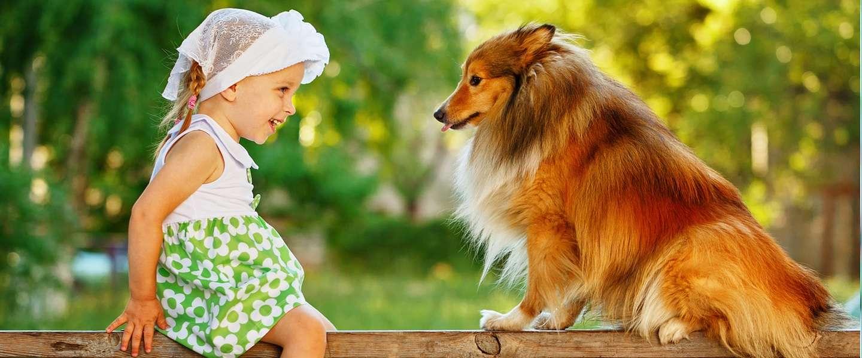 Amazon-rapport: we kunnen over 10 jaar praten met huisdieren