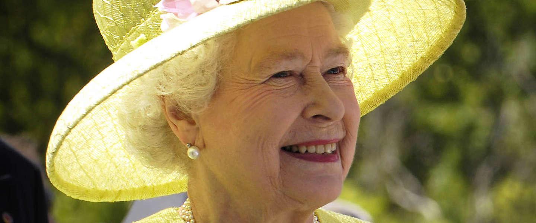 Kun jij koningin Elizabeth vinden tussen al haar hondjes?