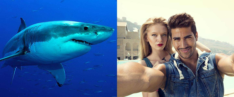Maken van een selfie gevaarlijker dan een aanval van een haai?