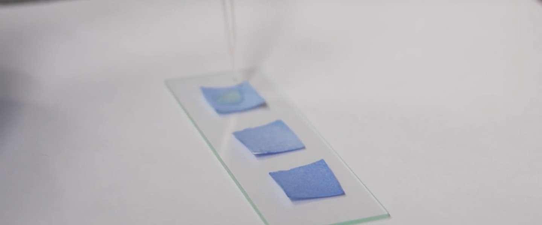 Dit slimme papiertje kan bedorven voedsel herkennen