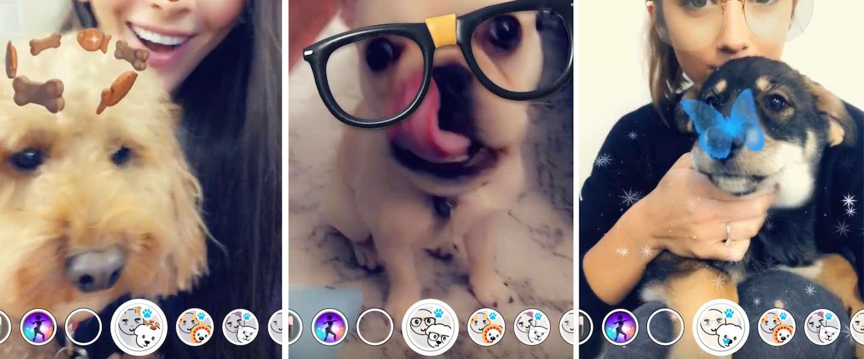 Snapchat lanceert nu ook filters voor honden