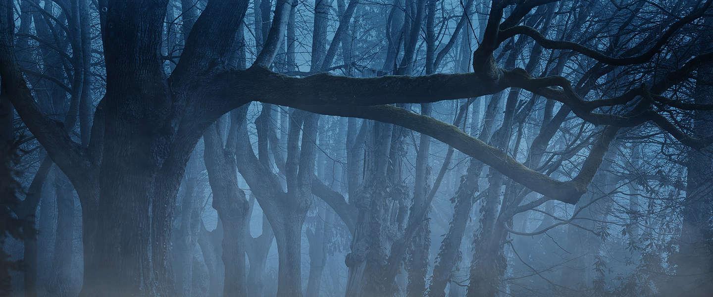 De vijf beste Stephen King-verfilmingen