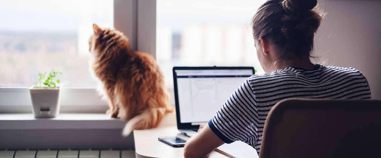 10 ergonomische do's en don'ts voor werken vanuit huis