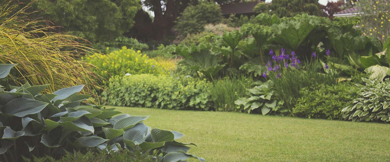 Tuin herinrichten? 8 zaken om rekening mee te houden