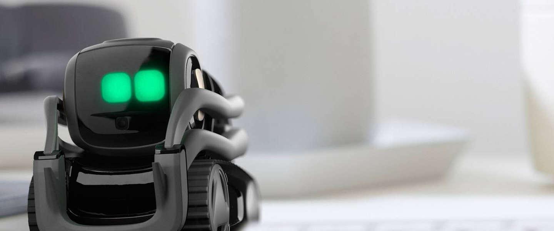 Vector: een slimme robot voor thuis