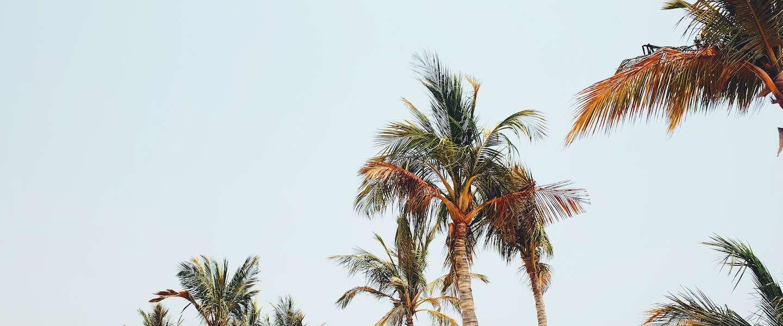 5 dingen die weer kunnen deze zomer