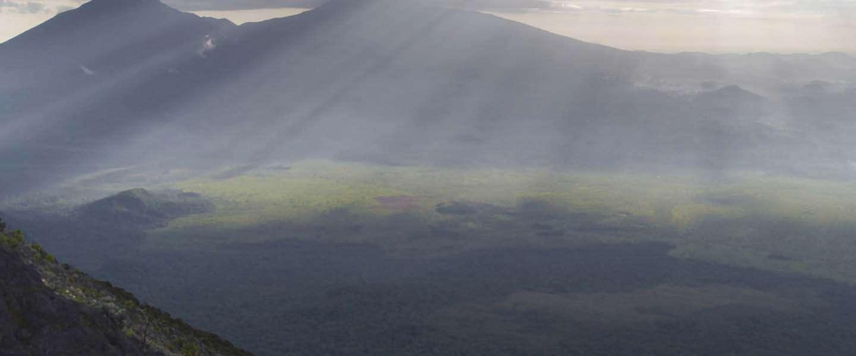 Netflix verkrijgt documentaire Virunga