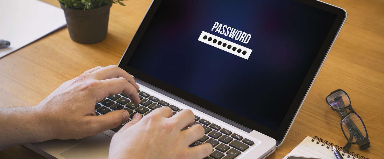 Gotcha: de wachtwoorden zoekmachine staat online