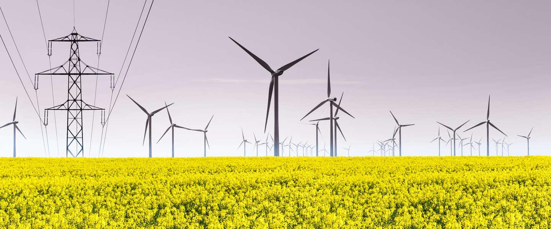 Het waait zo hard in Europa dat de energieprijzen even negatief waren