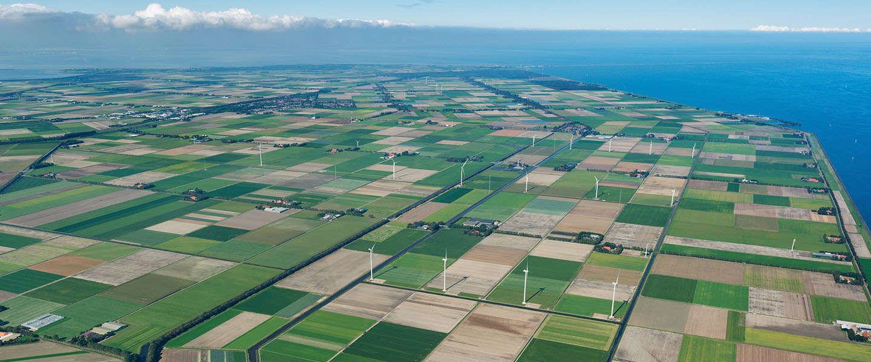 Gigantische datacenters Microsoft en Google: 'De cloud staat in Nederland'