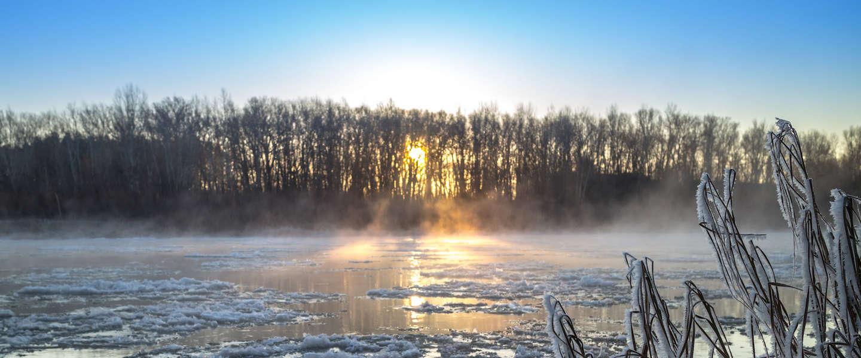 Het wordt winter: 5 tips voor de koude dagen