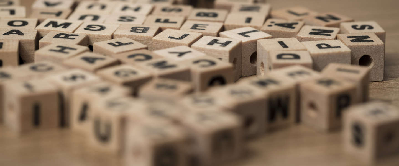 Treitervlogger is woord van het jaar 2016 in Nederland