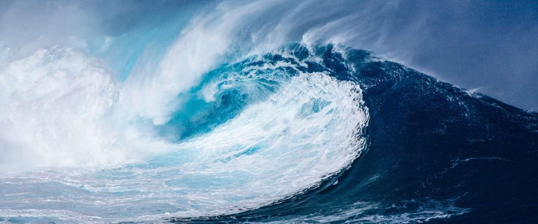 HCL waardeert durf en teamgeest van Dutchess of the Sea
