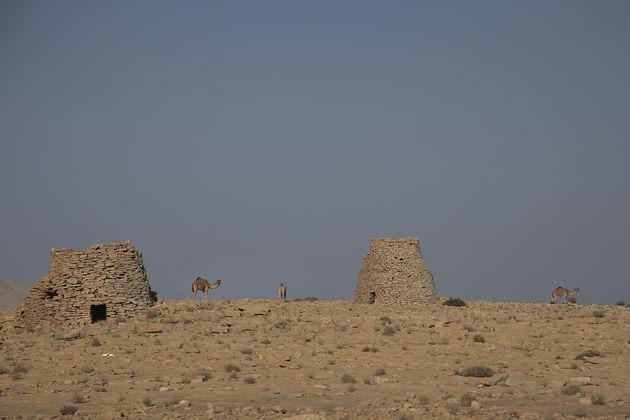 Amarok_Adventure_Oman_henkdehooge_16
