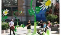 Bloemen met Zonne-energie en WiFi