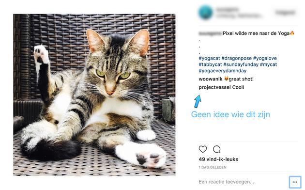 bot-volgers-instagram-voorbeeld