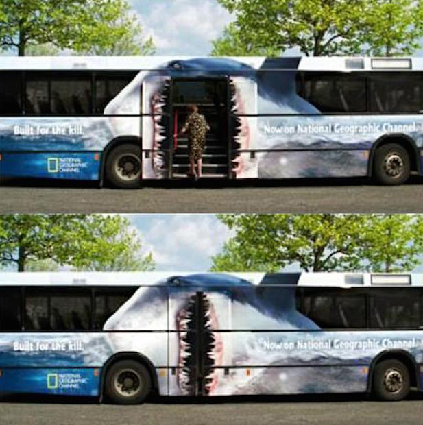 bus-15