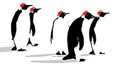 De eerste uren van Pinguinradio.nl