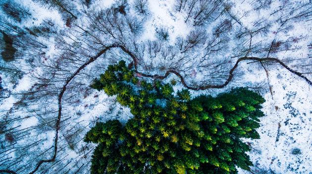 dronefoto's_2016_7