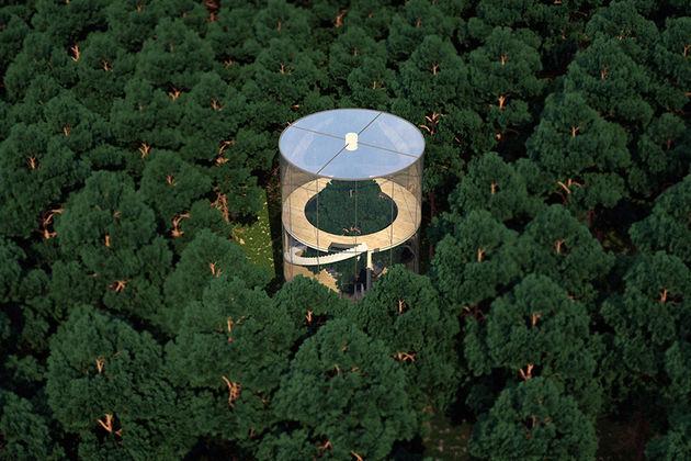 glazen-huis-om-boom-1