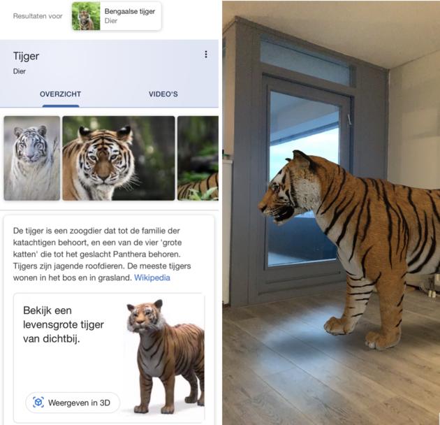 Google 3D dieren tijger