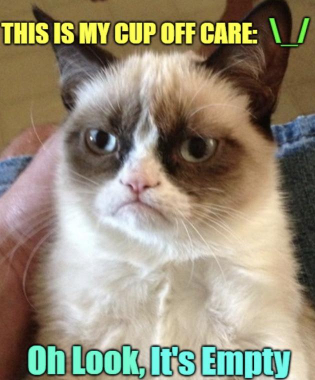 Grumpy Cat overleden
