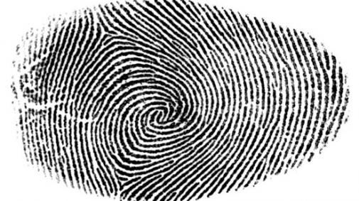 Identiteit 2.0: Digitale Pioniers ondersteunen talent