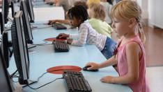 Internet telefonie gebruikt door 24% online bevolking