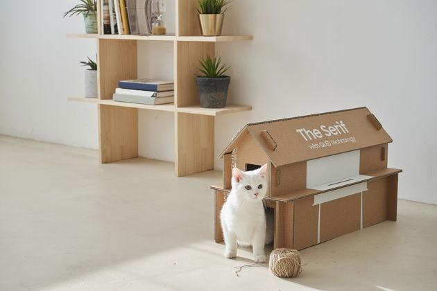 Kattenhuisje van tv-dozen