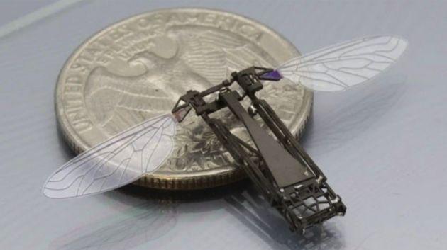 Maak kennis met Robo-Fly, 's werelds kleinste vliegende robot
