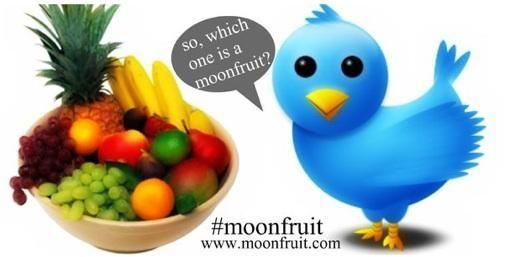 Moonfruit : Twitterlesje voor marketeers