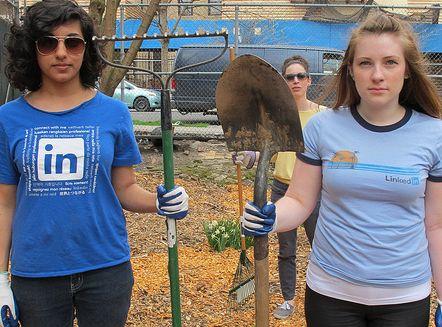 Nederlandse vrijwilligers op LinkedIn