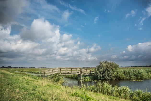 netherlands-green