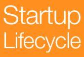 Niet alle startups redden het [Infographic]