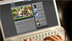 Online video in de USA groeit met 45% in januari 2011